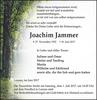 Joachim Jammer