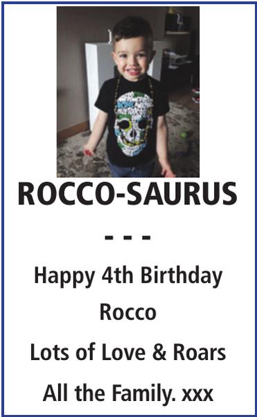 ROCCO-SAURUS : Birthday