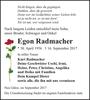 Egon Radmacher