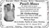 Pauli-Maus