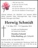 Herwig Schmidt